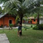 Наш домик на Самуи: Coco House