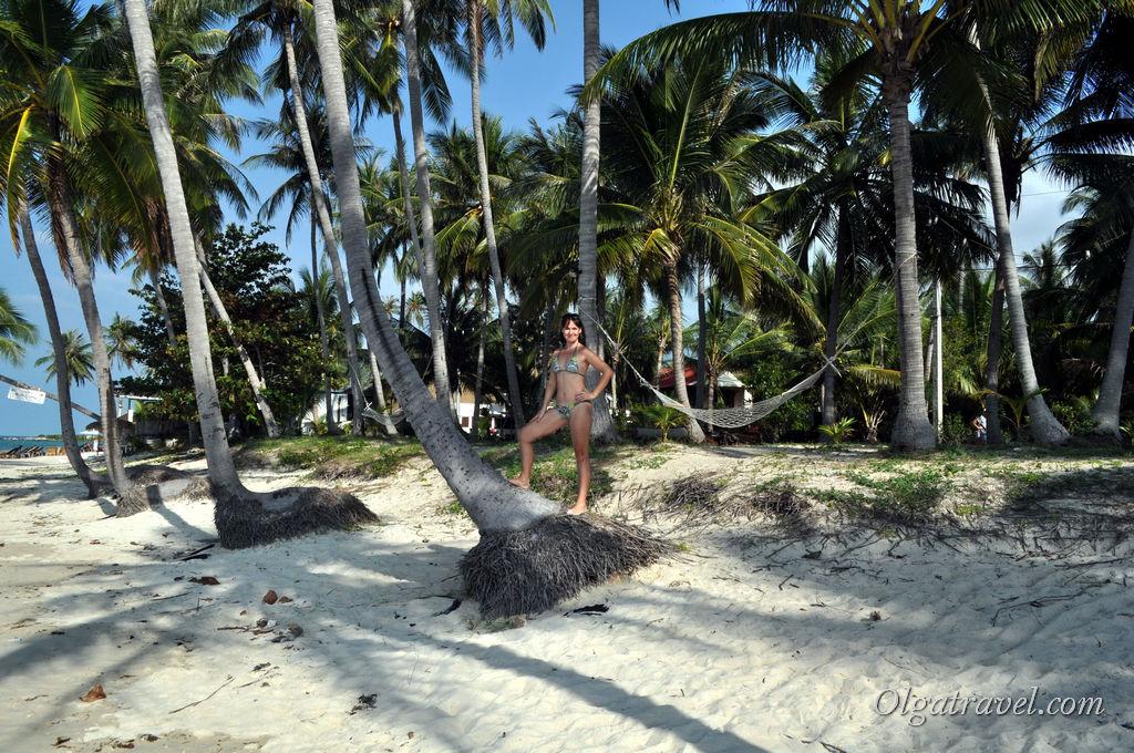 Samui_Baan_Tai_beach_11