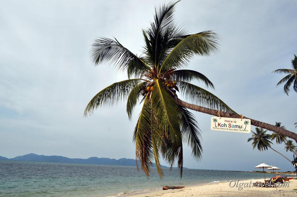 Samui_Baan_Tai_beach_3