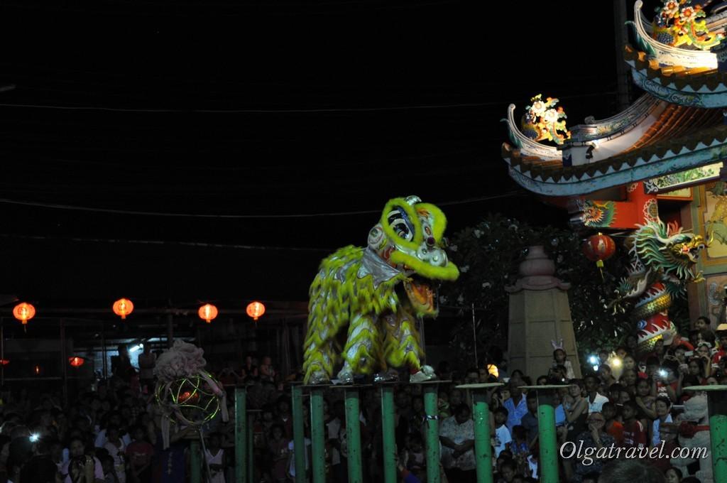 Лев во всей красе на праздновании Китайского нового года в Таиланде