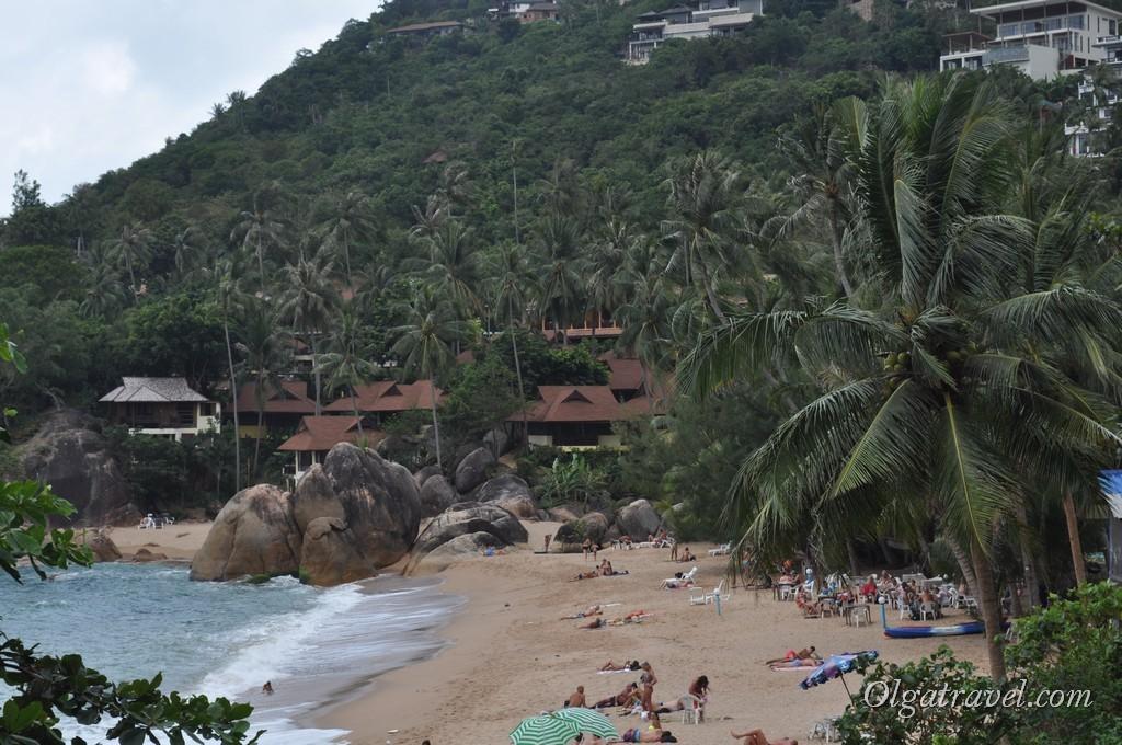 Coral Cove 5