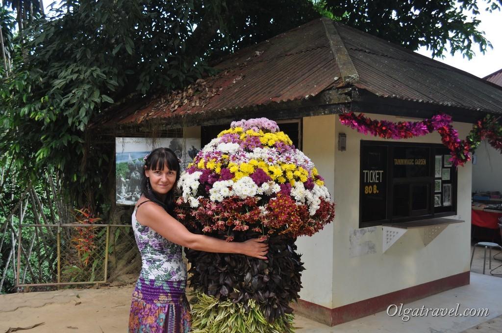 Возле входа в Magic Garden посажены такие вот цветы