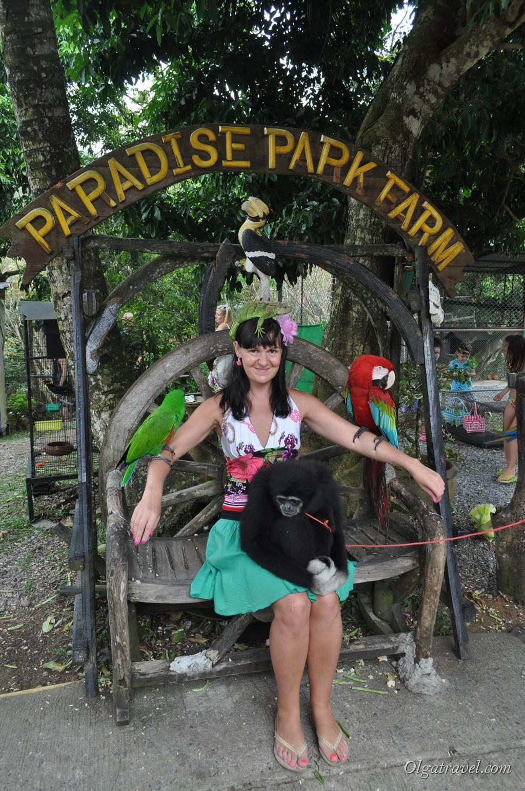 Парадиз парк Ко Самуи (Paradise Park)