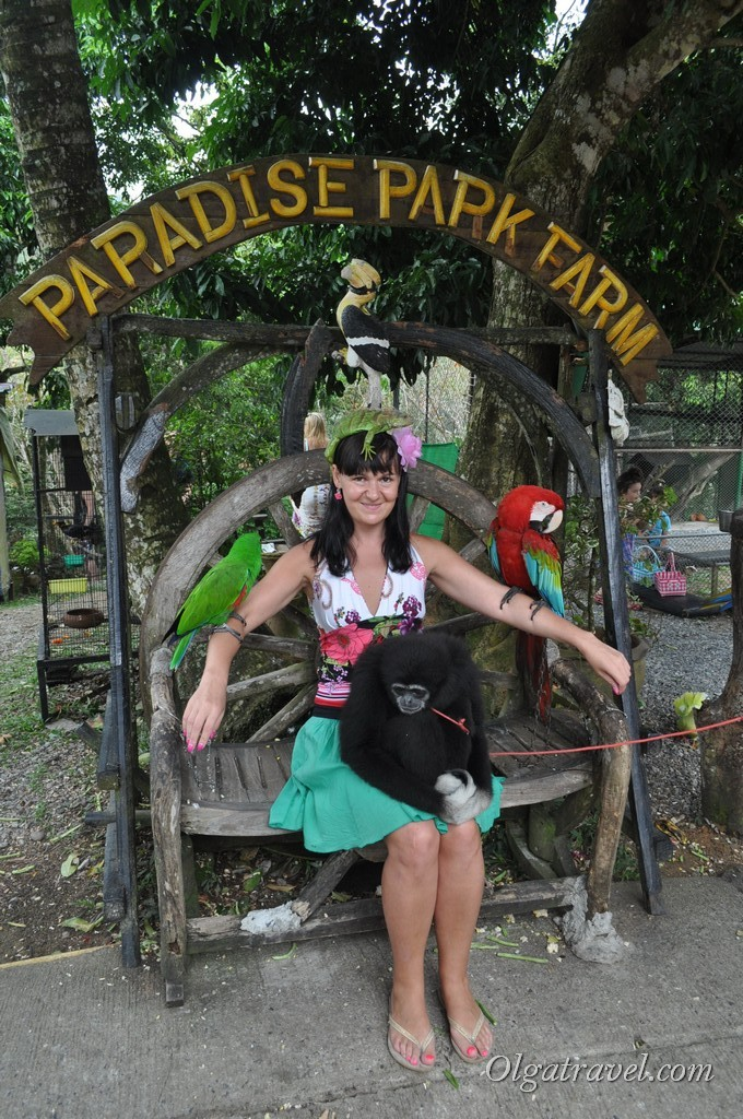 Стандартное фото на память о посещении Парадайз парка