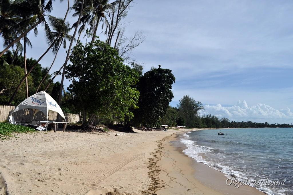 Не смотря на обильную растительность после обеда природной тени на пляже почти нет
