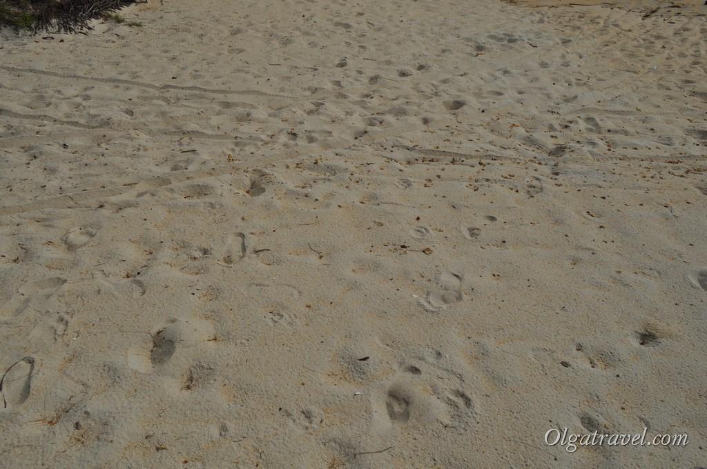 Песок на пляже Липа Ной