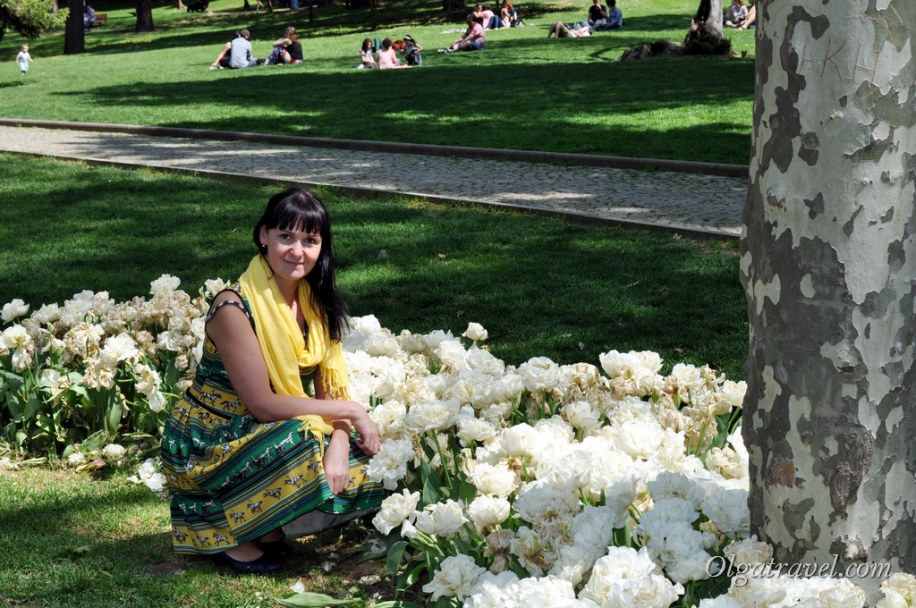 Гюльхане парк тюльпаны