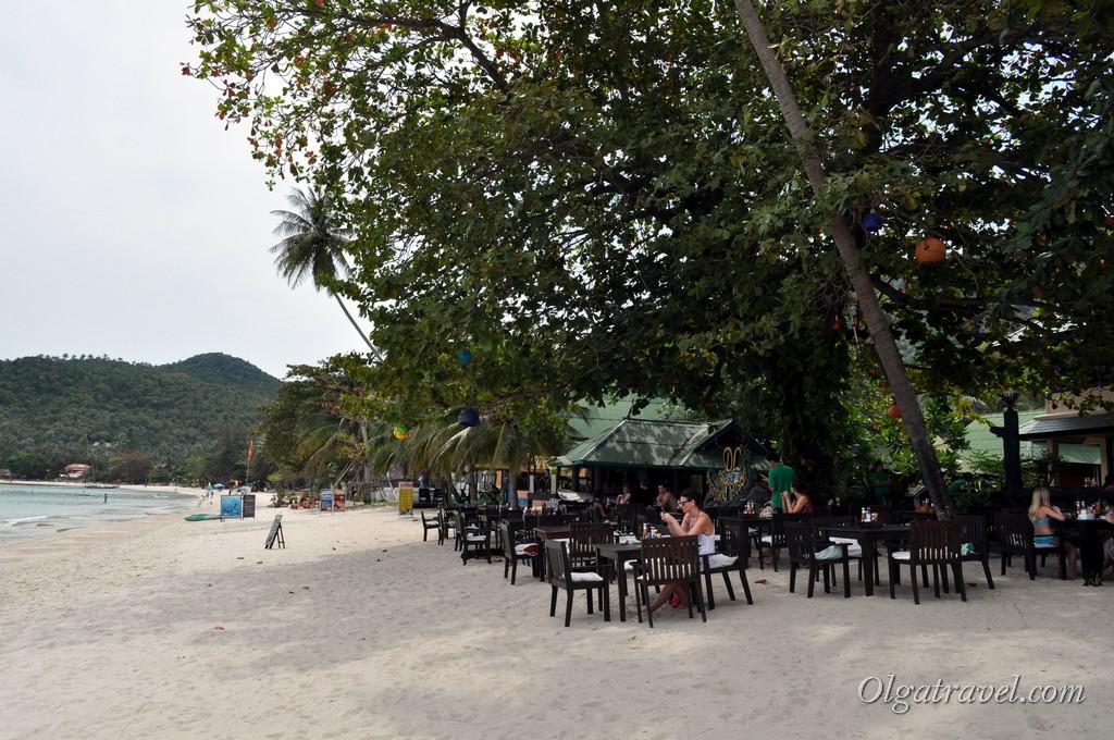 Ресторан на пляже при отеле Dreamland Resort