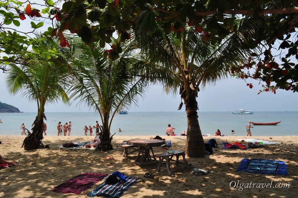 Пытаемся найти место в тени под пальмой:)