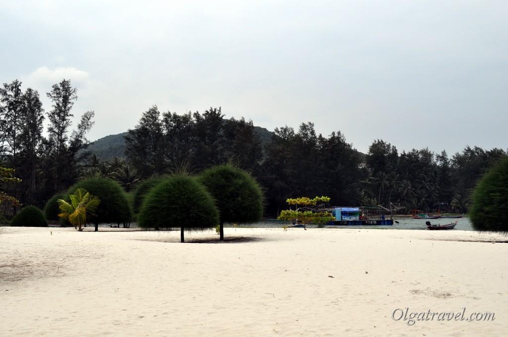 Malibu Beach - сочетание белого как мука песка и хвойных деревьев