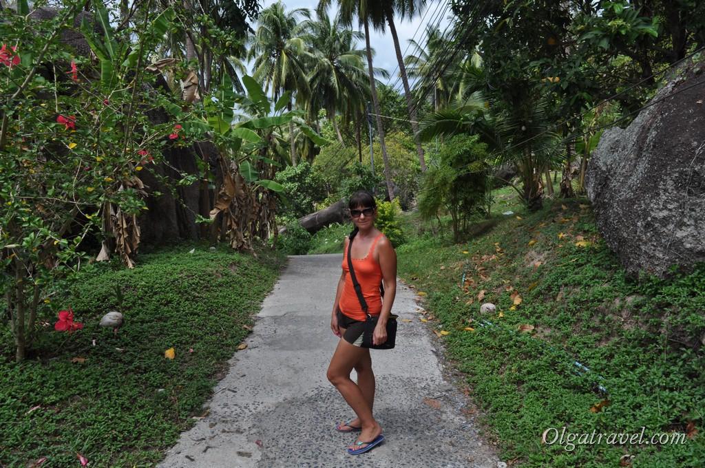 Koh Tao road 4