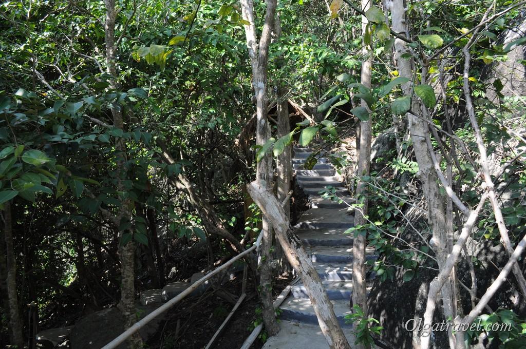 Дорожка через джунгли к пляжу Sai Nuan Beach