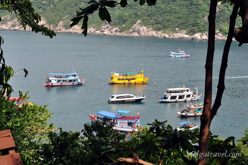 Вид на бухту и соседний Ко Тао