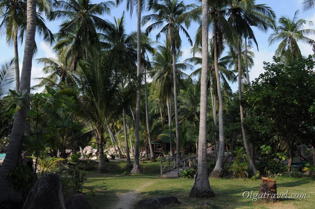Территория отеля Sai Thong Resort