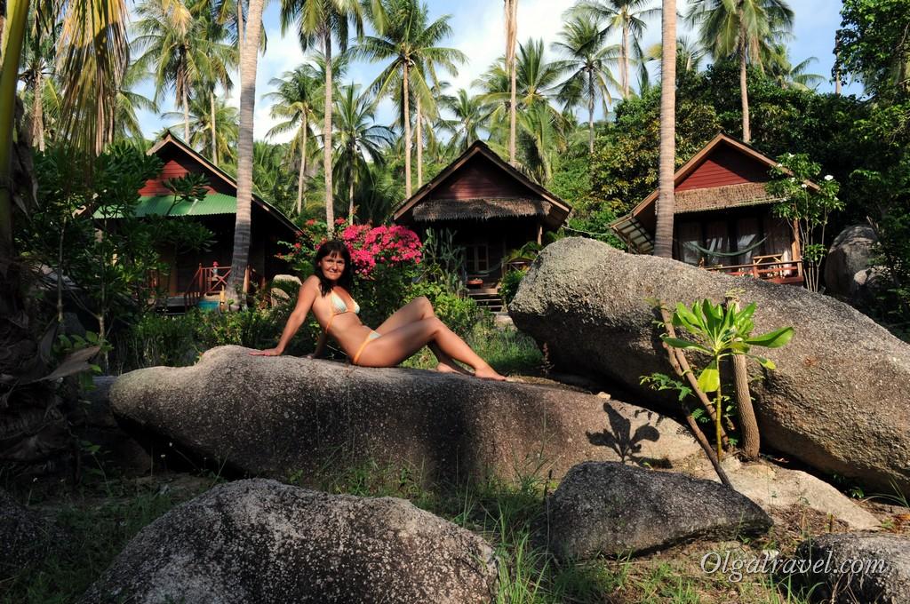 Домики отеля Sai Thong Resort по 20 долларов в сутки