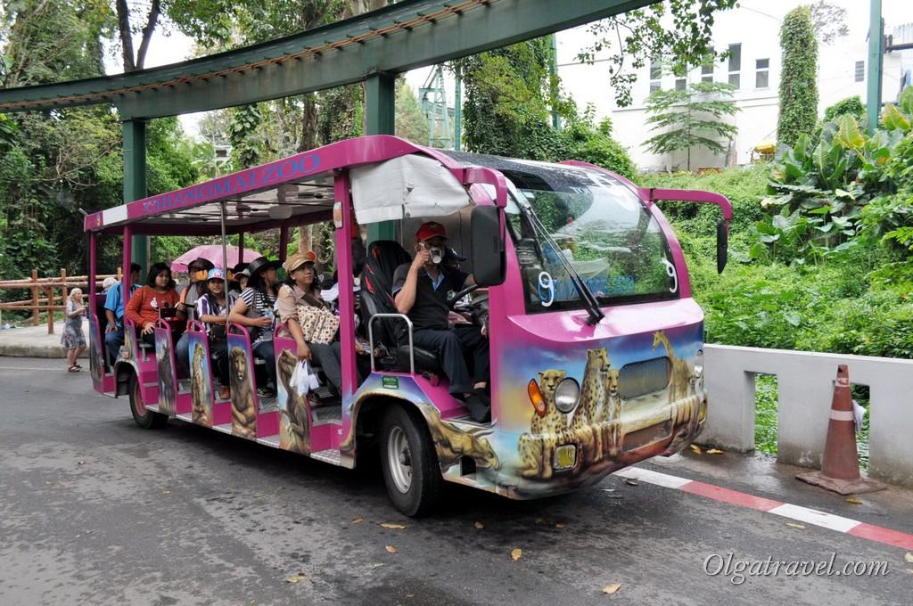 Chiangmai Zoo 10