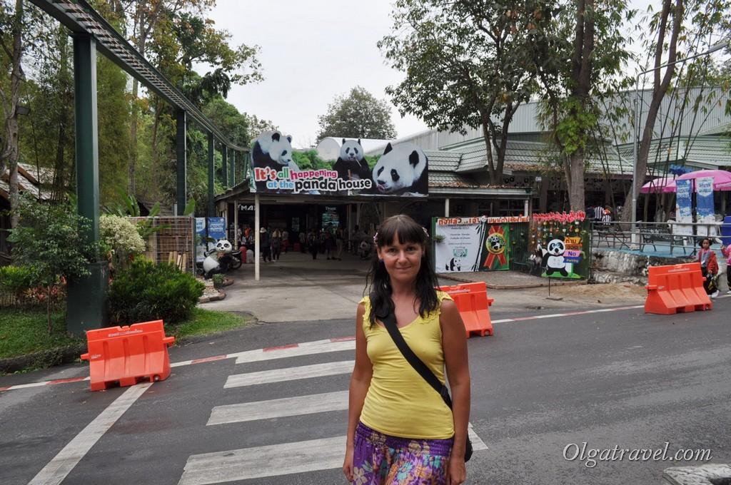 Chiangmai Zoo 12