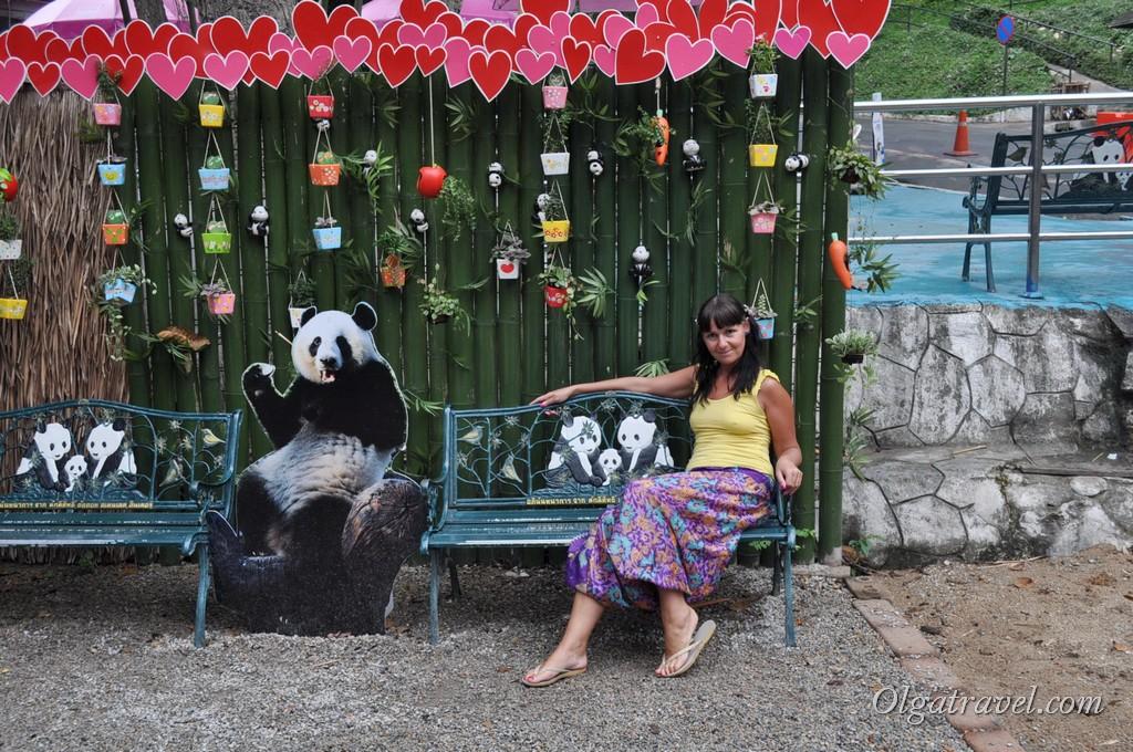 Chiangmai Zoo 13
