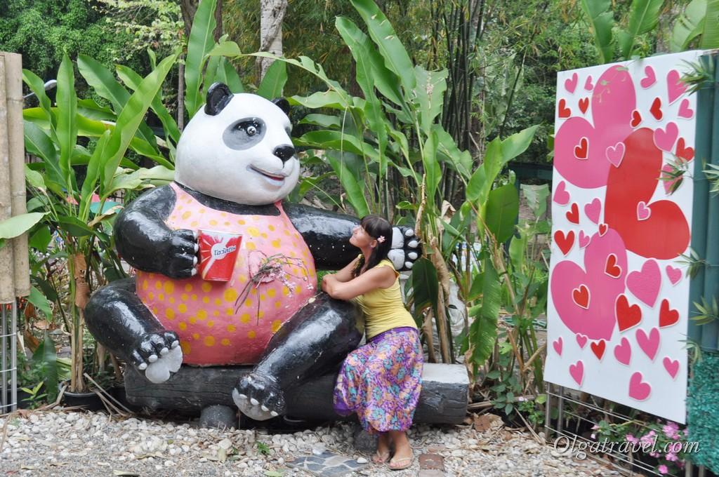 Chiangmai Zoo 14