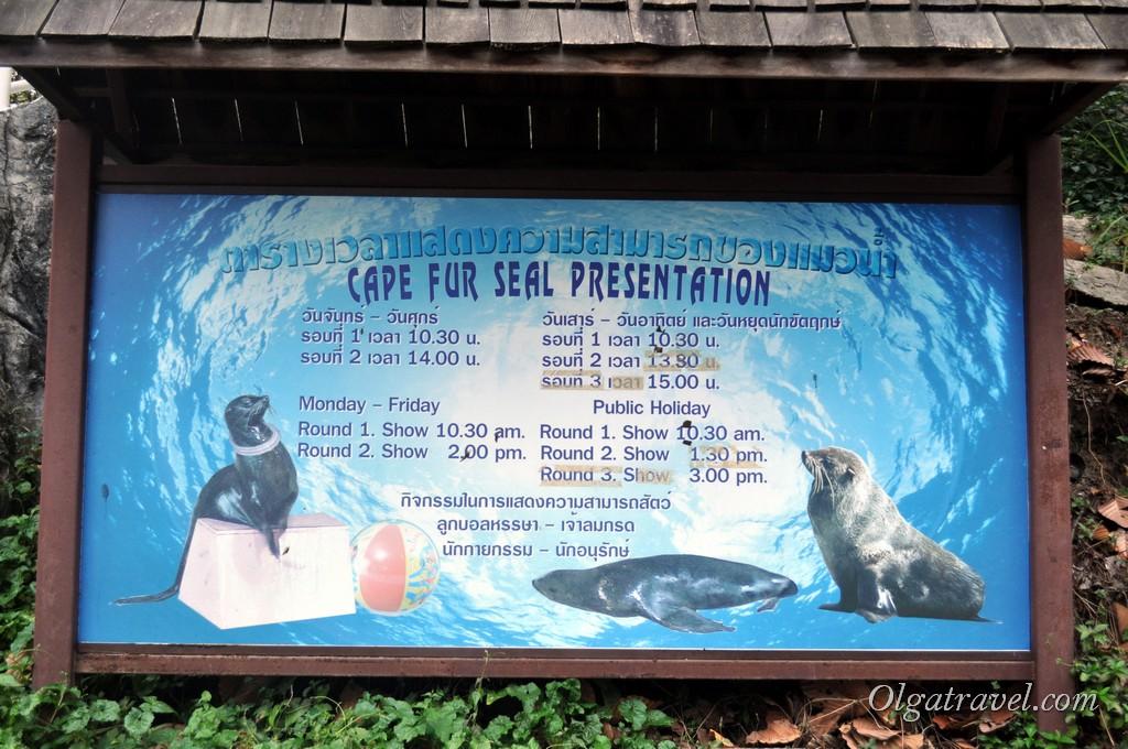 Chiangmai Zoo 41