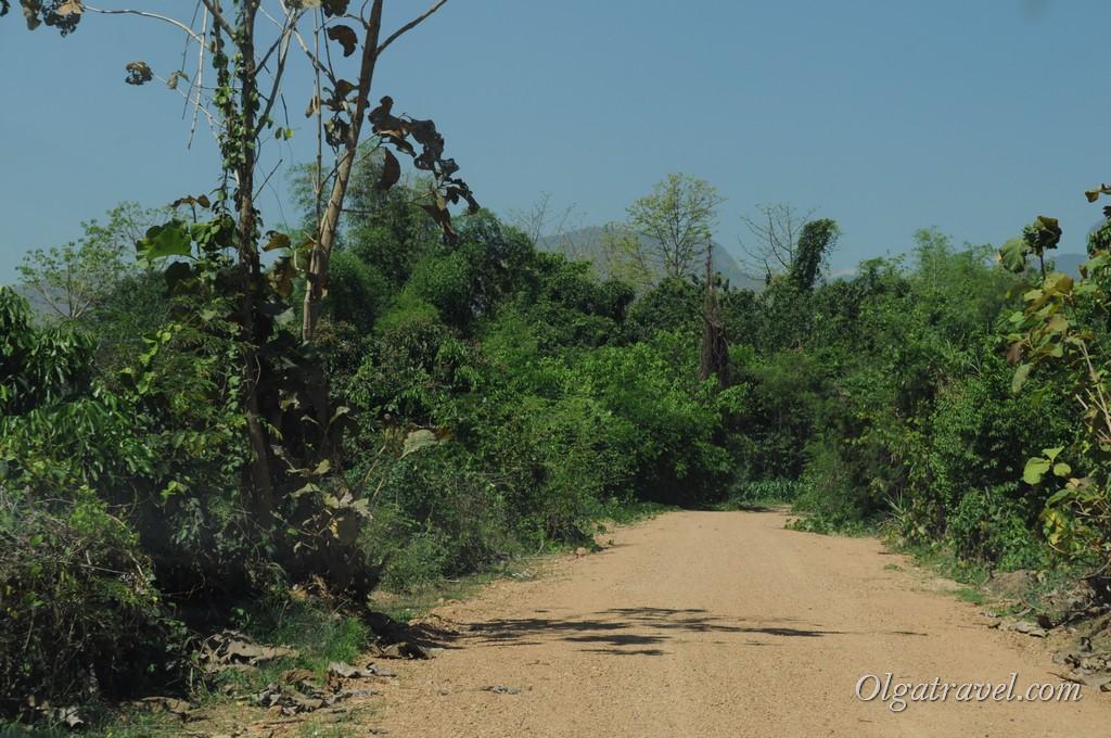 Mae Ya Waterfall road