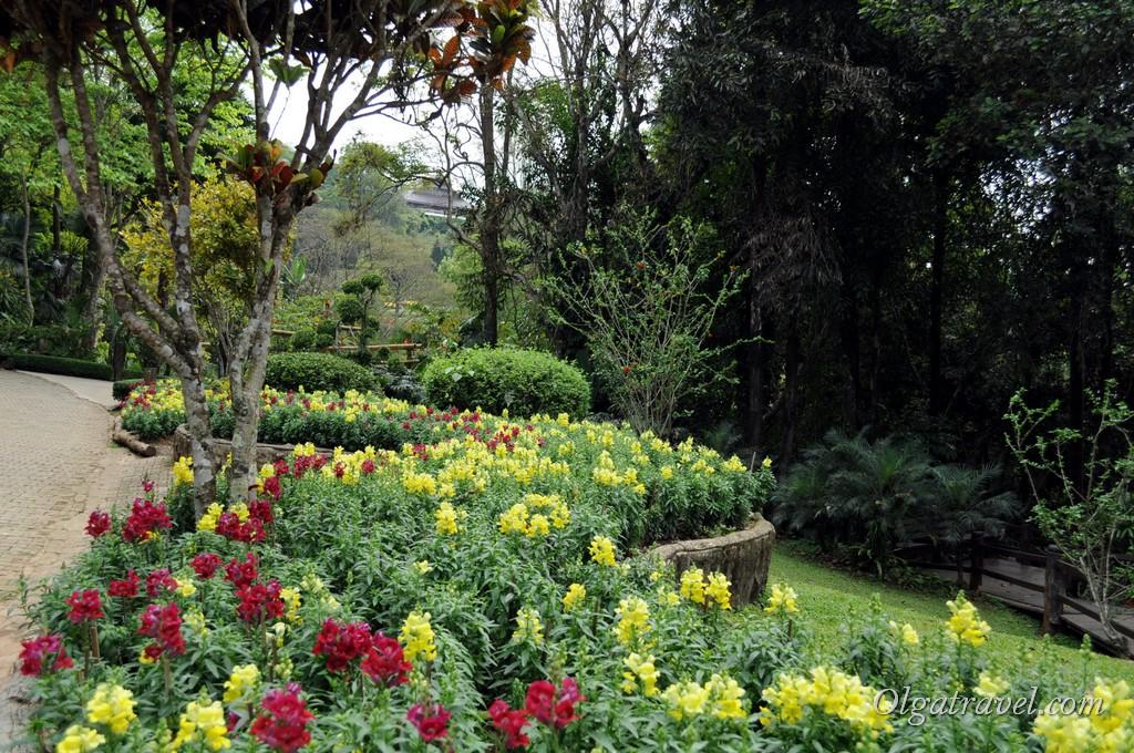 Mae_Fa_Luang_Garden_1