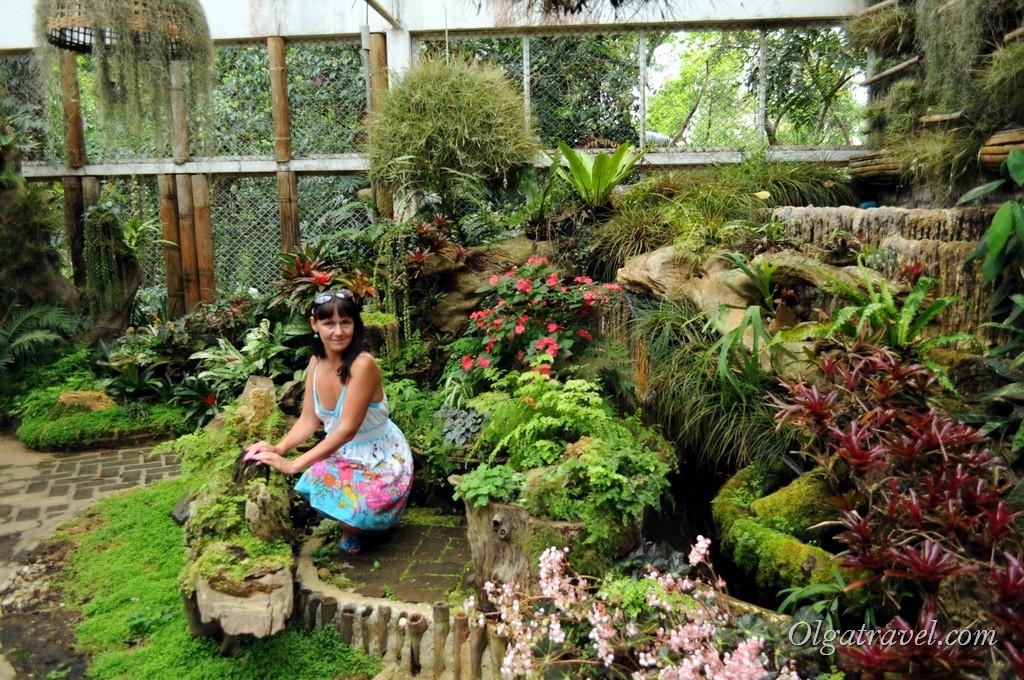 Mae_Fa_Luang_Garden_2