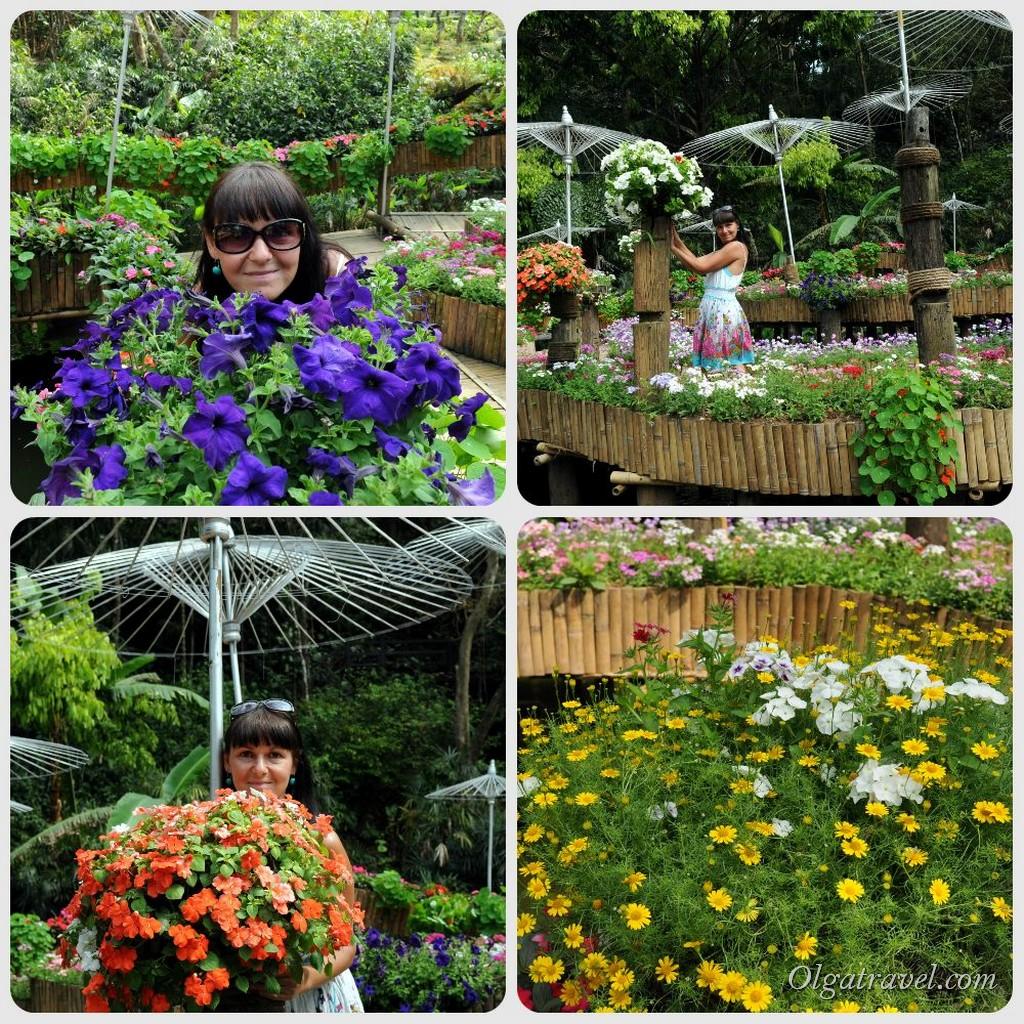 Mae_Fa_Luang_Garden_20