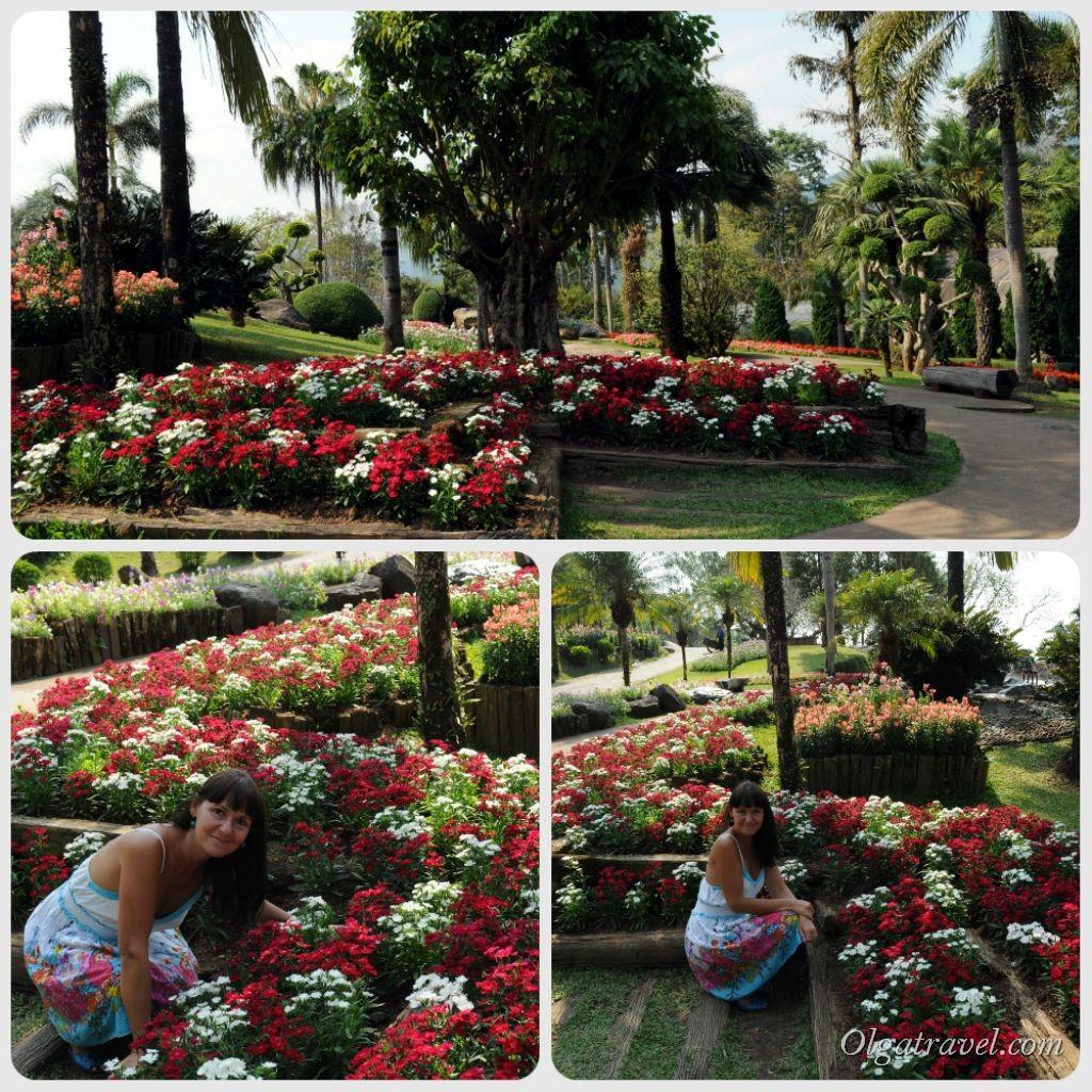 Mae_Fa_Luang_Garden_22