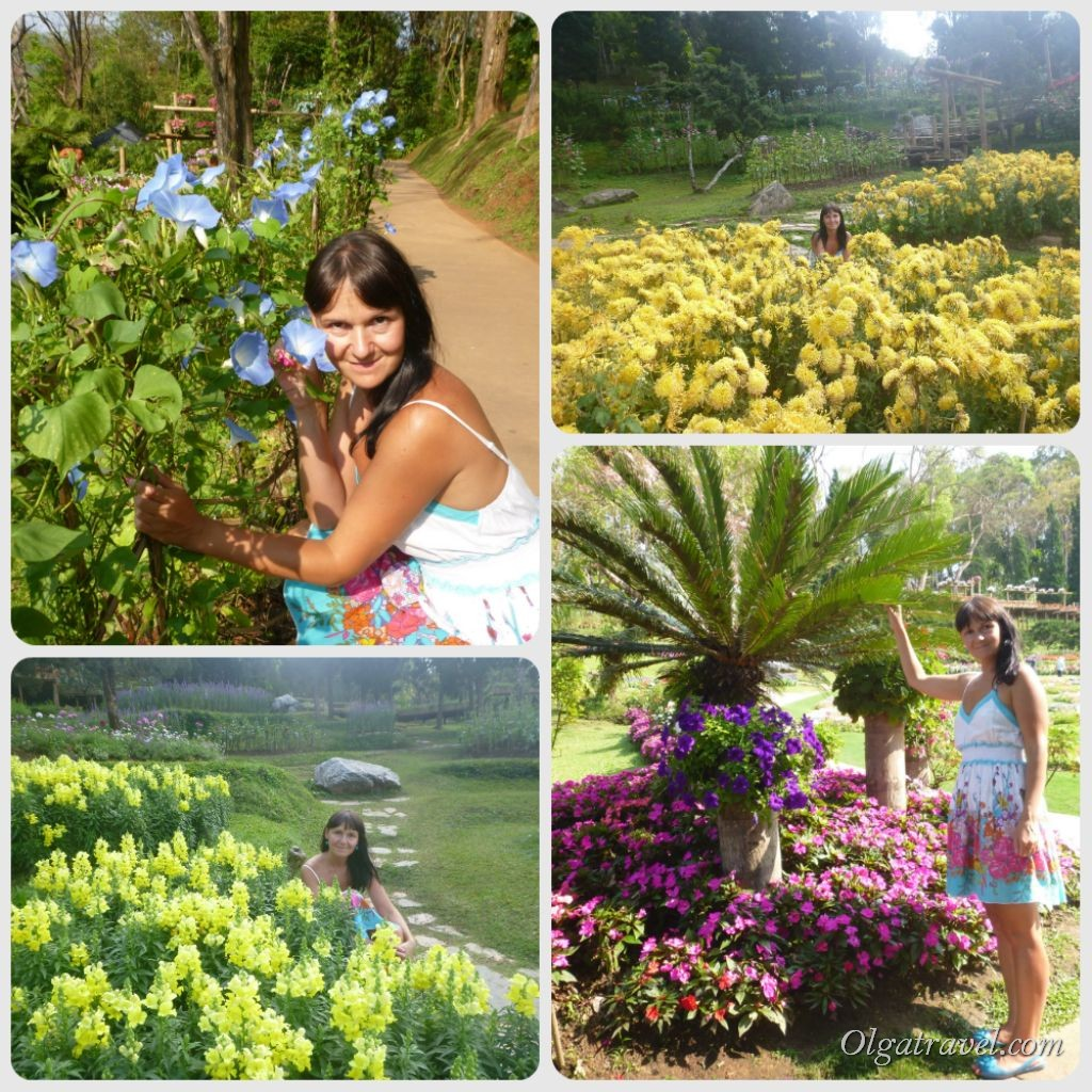 Mae_Fa_Luang_Garden_24