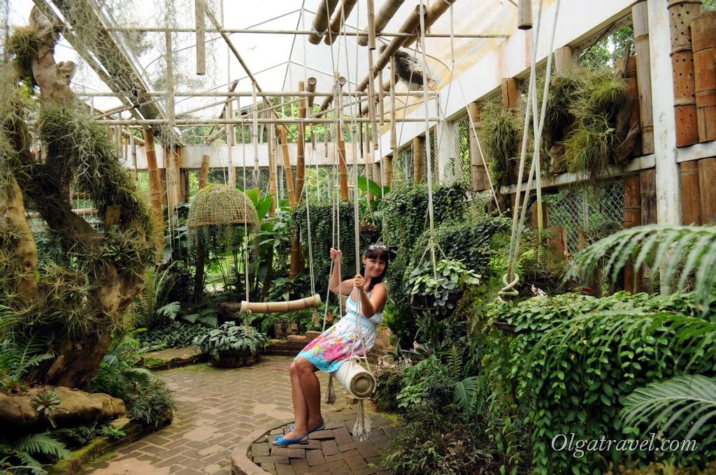 Mae_Fa_Luang_Garden_3
