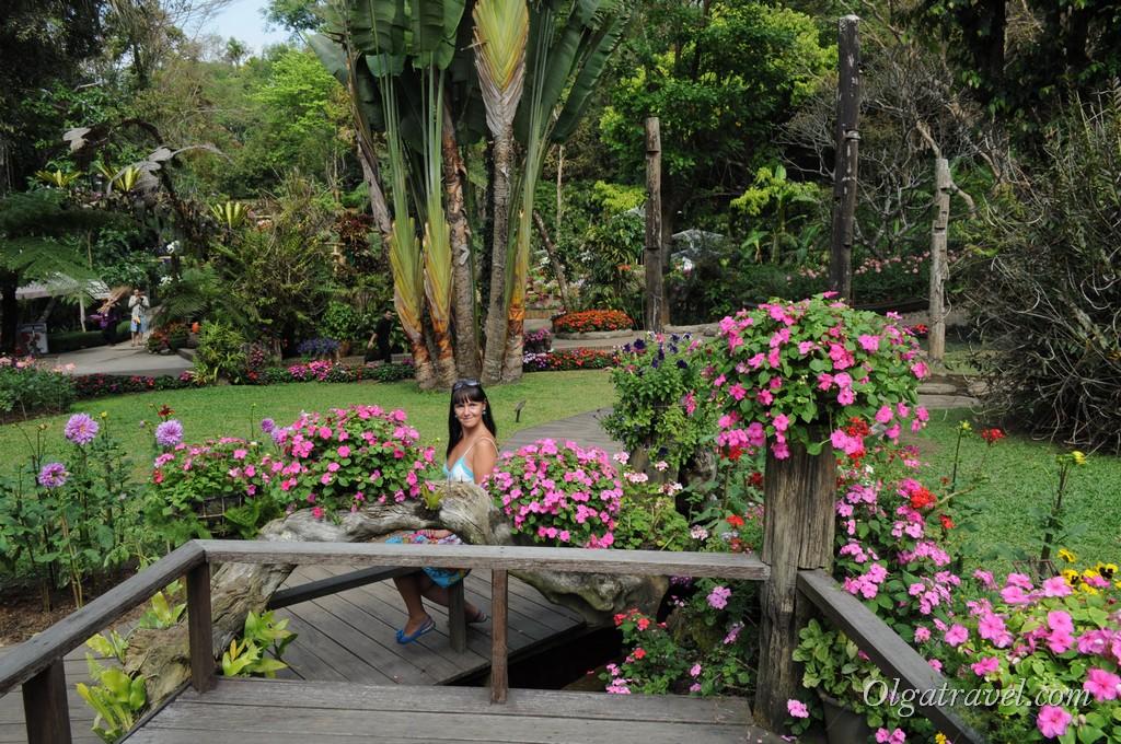 Mae_Fa_Luang_Garden_7