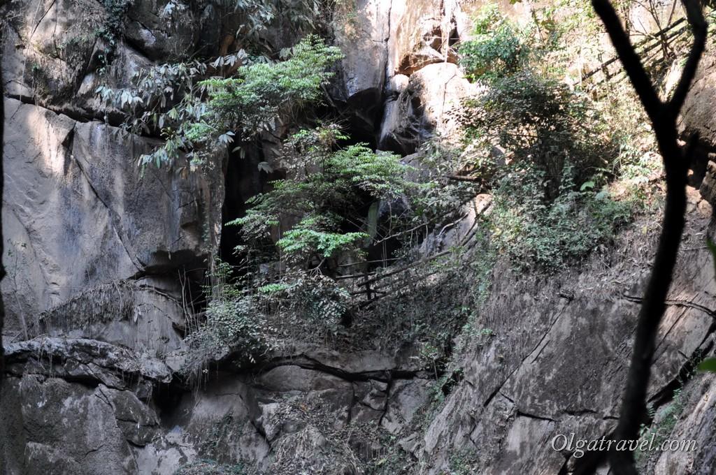Наверху пещера, где живут летучие мыши