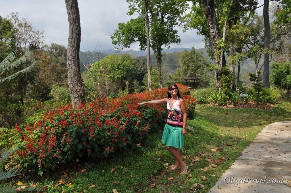 Queen Sirikit Botanic garden 11