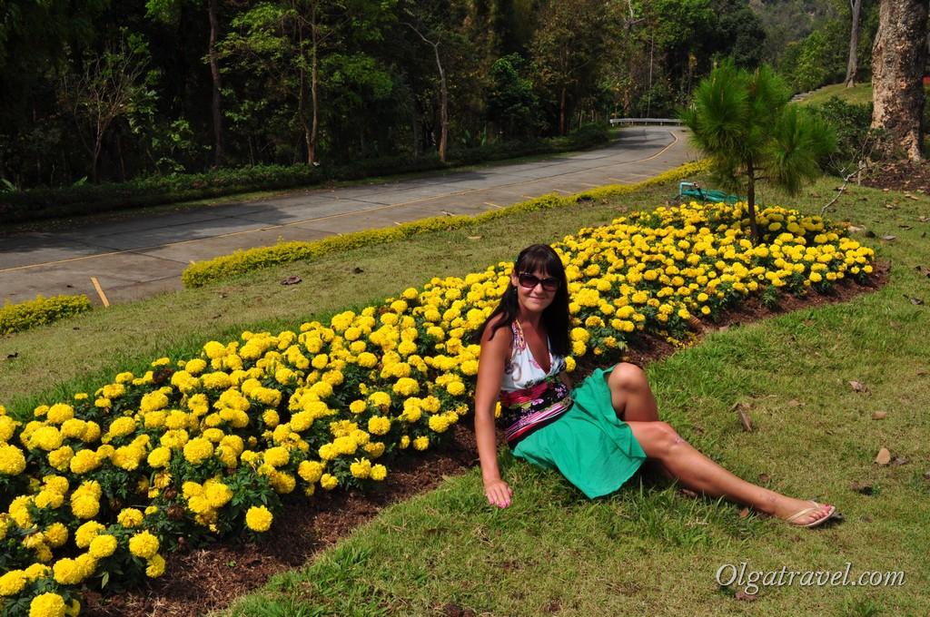 Queen Sirikit Botanic garden 12