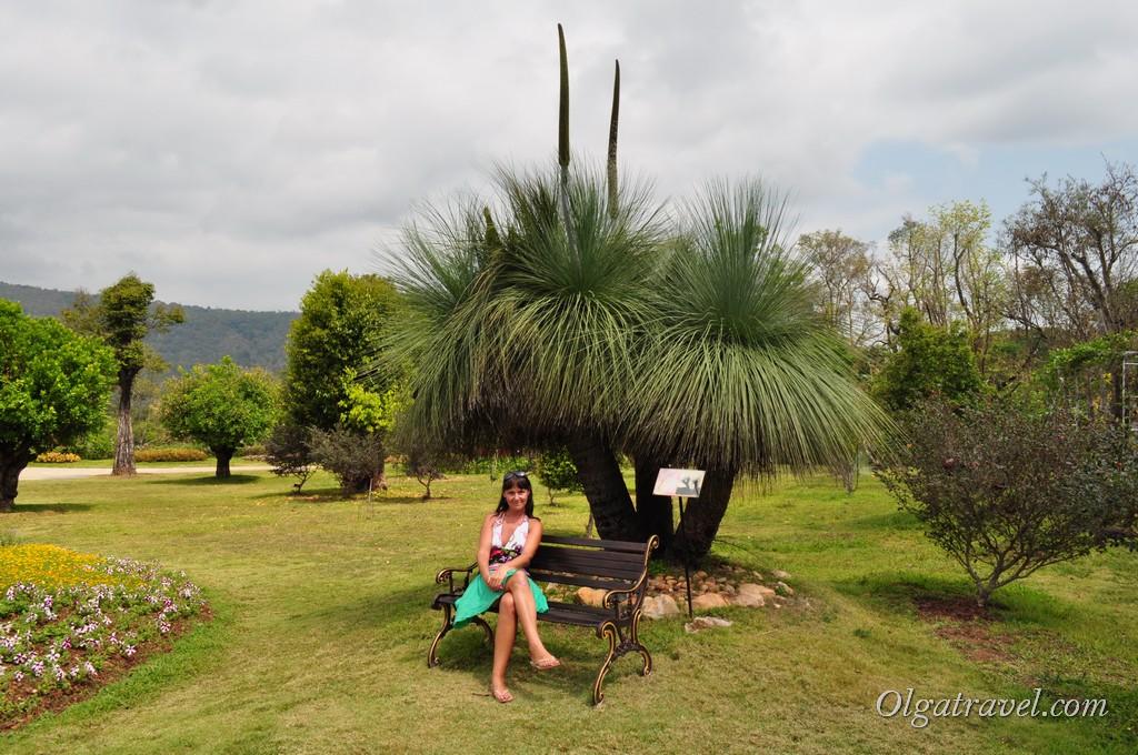 Queen Sirikit Botanic garden 14