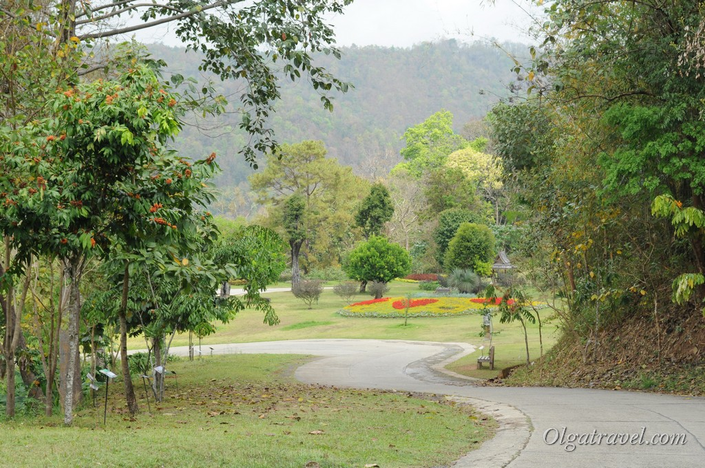 Queen Sirikit Botanic garden 16