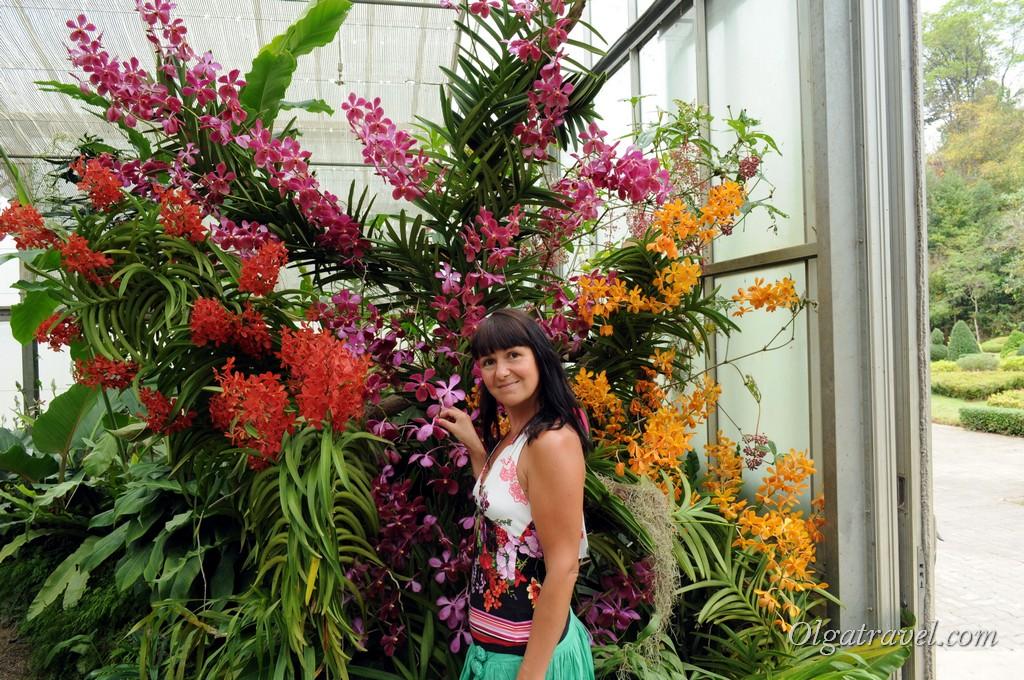 Queen Sirikit Botanic garden 29