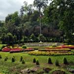 Чианг Май: Ботанический сад королевы Сирикит (Queen Sirikit Botanic Garden)
