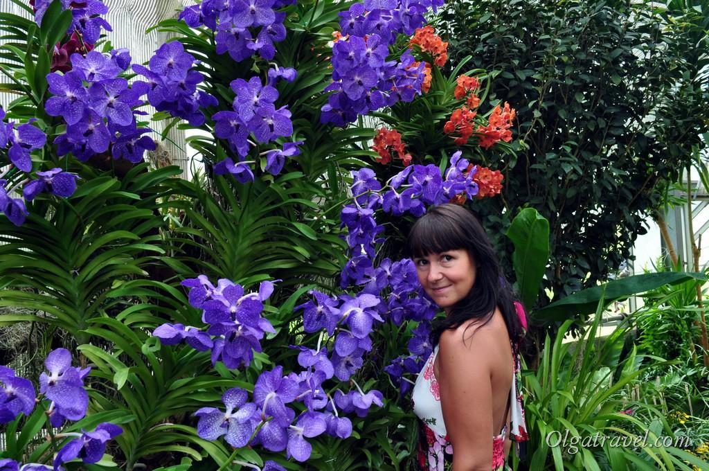 Queen Sirikit Botanic garden 30