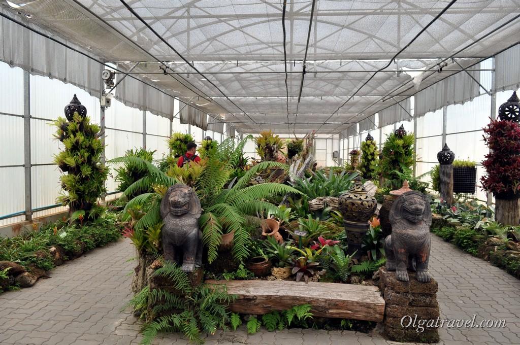 Queen Sirikit Botanic garden 37