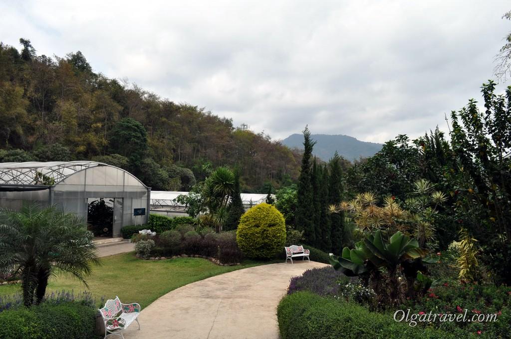 Queen Sirikit Botanic garden 39