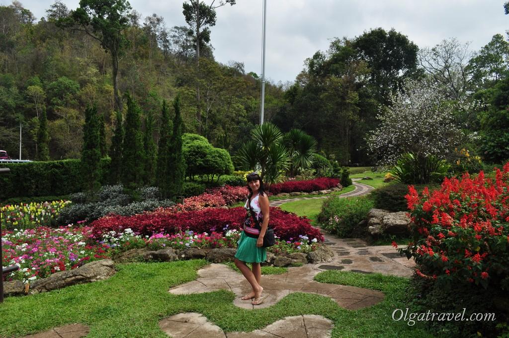 Queen Sirikit Botanic garden 5