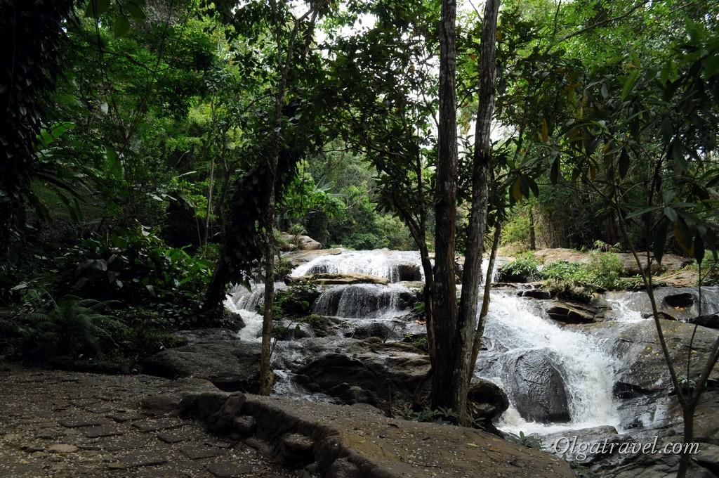 Queen Sirikit Botanic garden 54