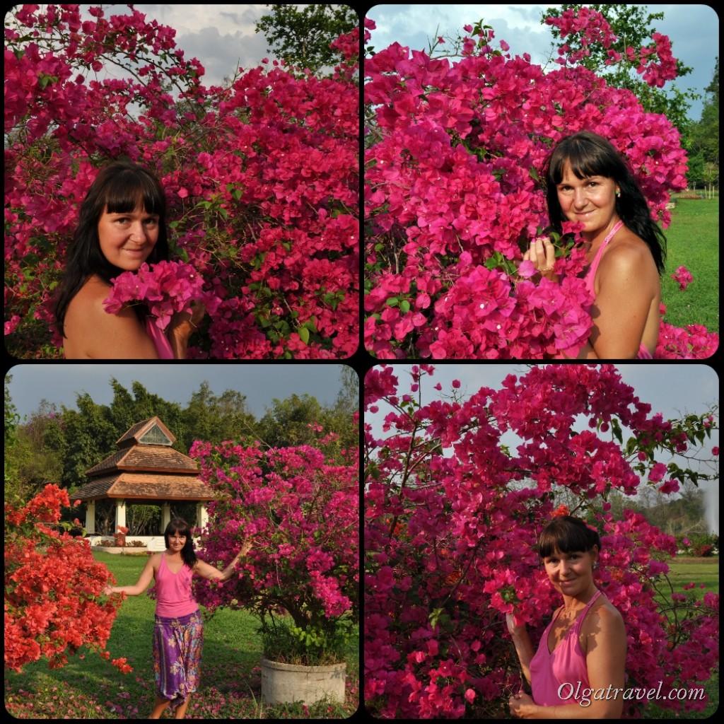 San_Kamphaeng_Hot_Sptings_38