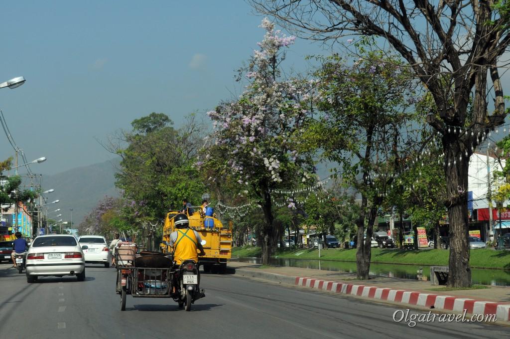 Chiang_Mai_3
