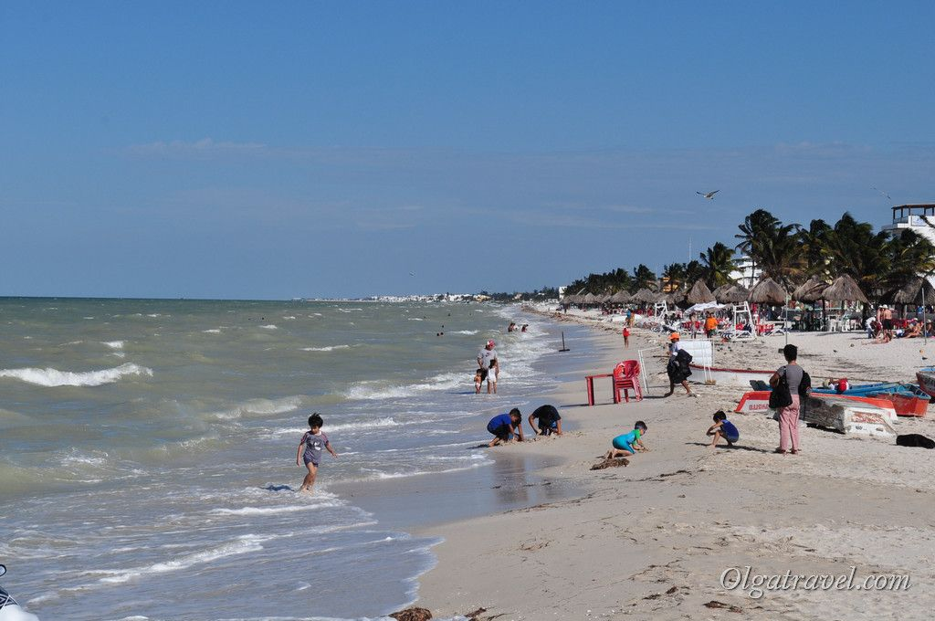 Мексиканский залив пляж