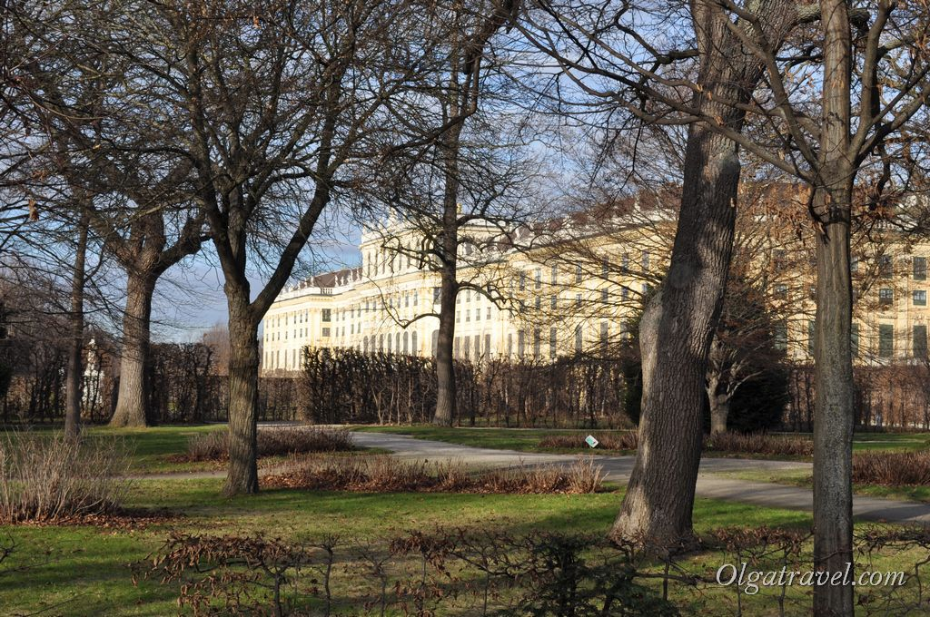 парк дворца Шенбрун