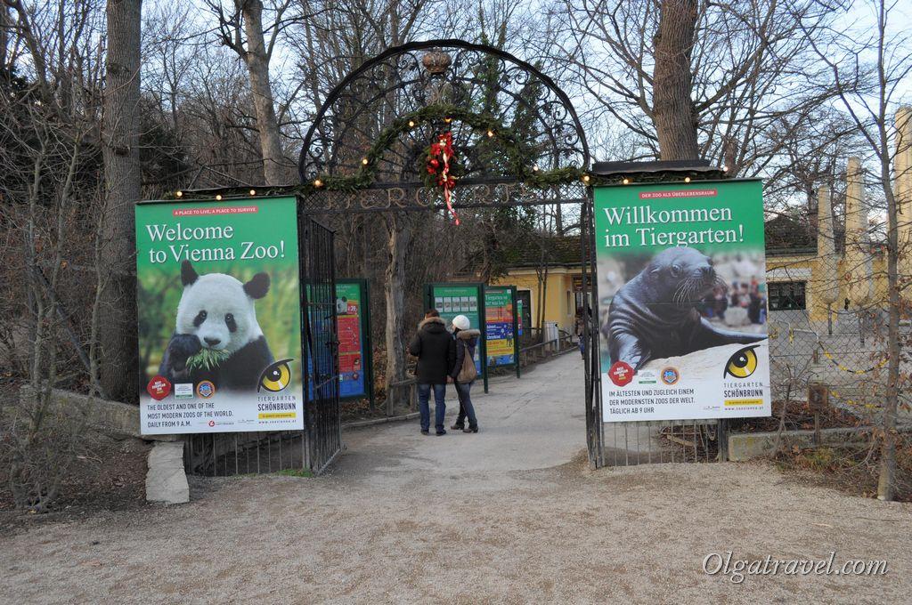 зоопарк Шенбрун