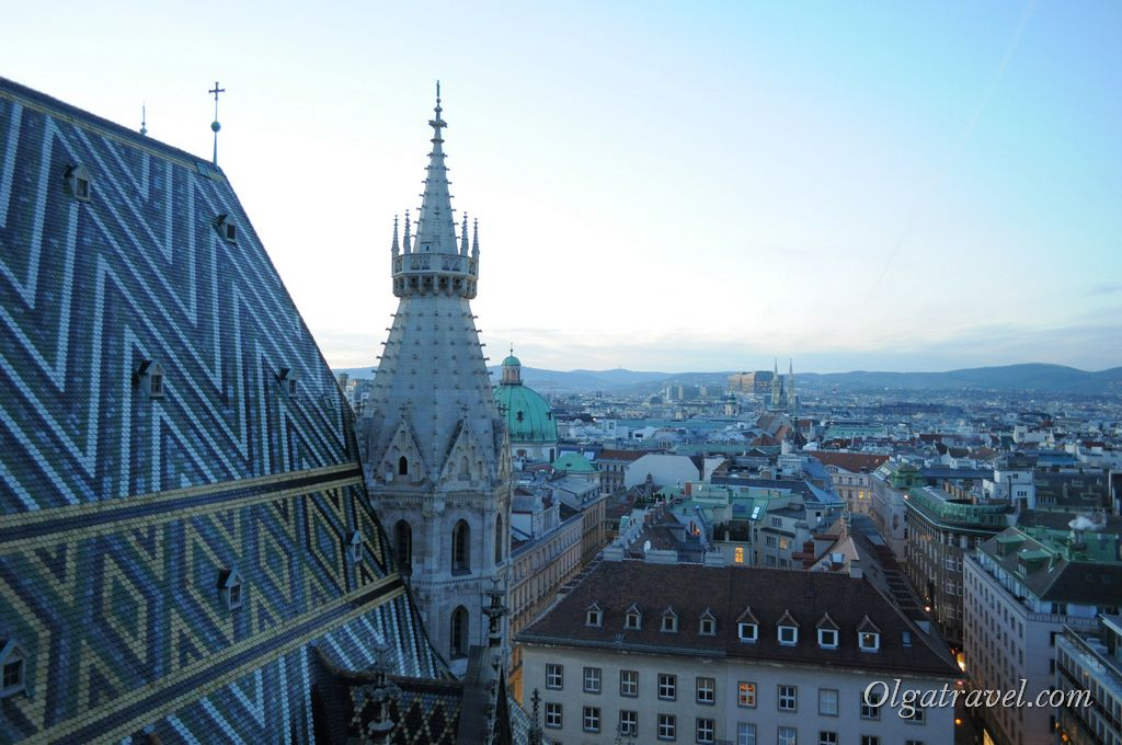 Vienna_St._Stephan_cathedral_16